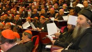 Il metropolita al Sinodo dei vescovi cattolici